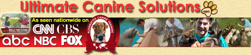 Michigan Dog Training and Dog Training DVDs